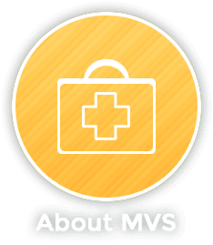 Madison Veterinary Specialists - About MVS