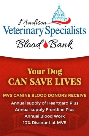 Madison Veterinary Specialists Blood Bank