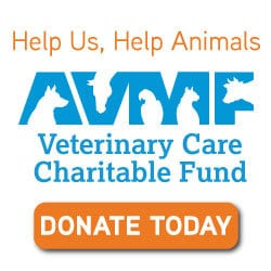 Help Animals in Our Community!