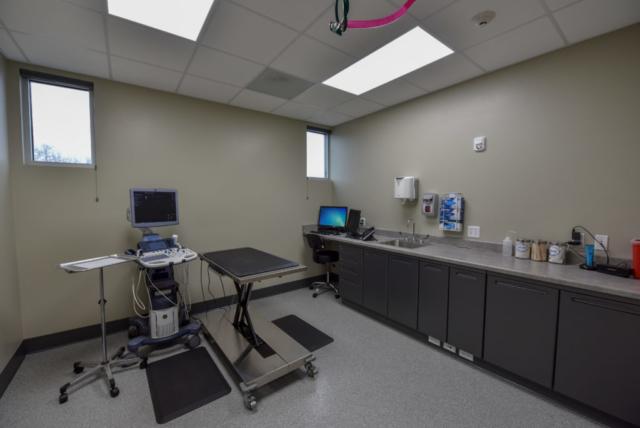 veterinary specialty, specialty vet hospital, specialty veterinary hospital, veterinary ultrasound, internal medicine