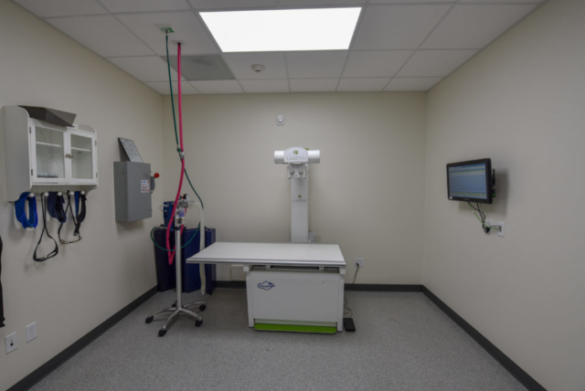 veterinary specialty, specialty vet hospital, specialty veterinary hospital, x-ray, radiology, radiologist
