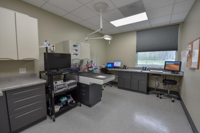 veterinary specialty, specialty vet hospital, specialty veterinary hospital, internal medicine, endoscopy,