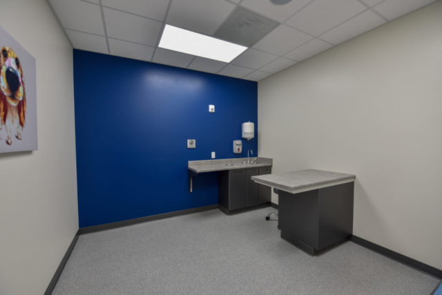 veterinary exam room, emergency vet exam room, veterinary specialty, specialty vet hospital, specialty veterinary hospital