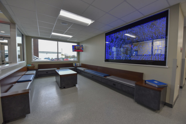 veterinary lobby, emergency vet lobby, veterinary waiting room, specialty vet hospital, specialty veterinary hospital